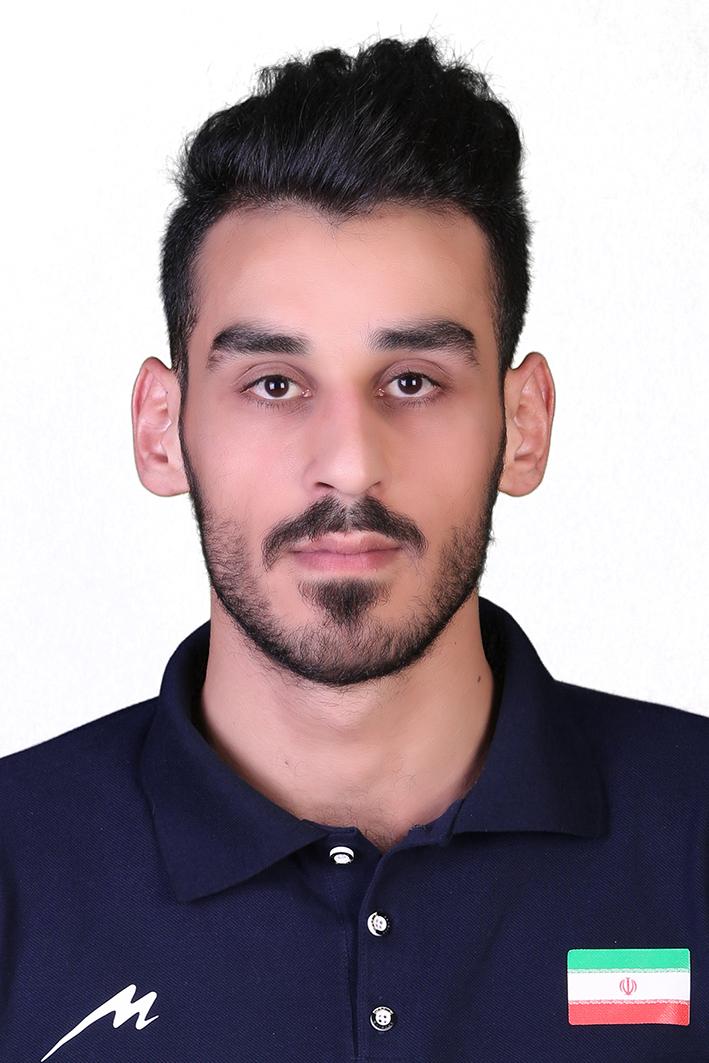Seyed Amin Alavi