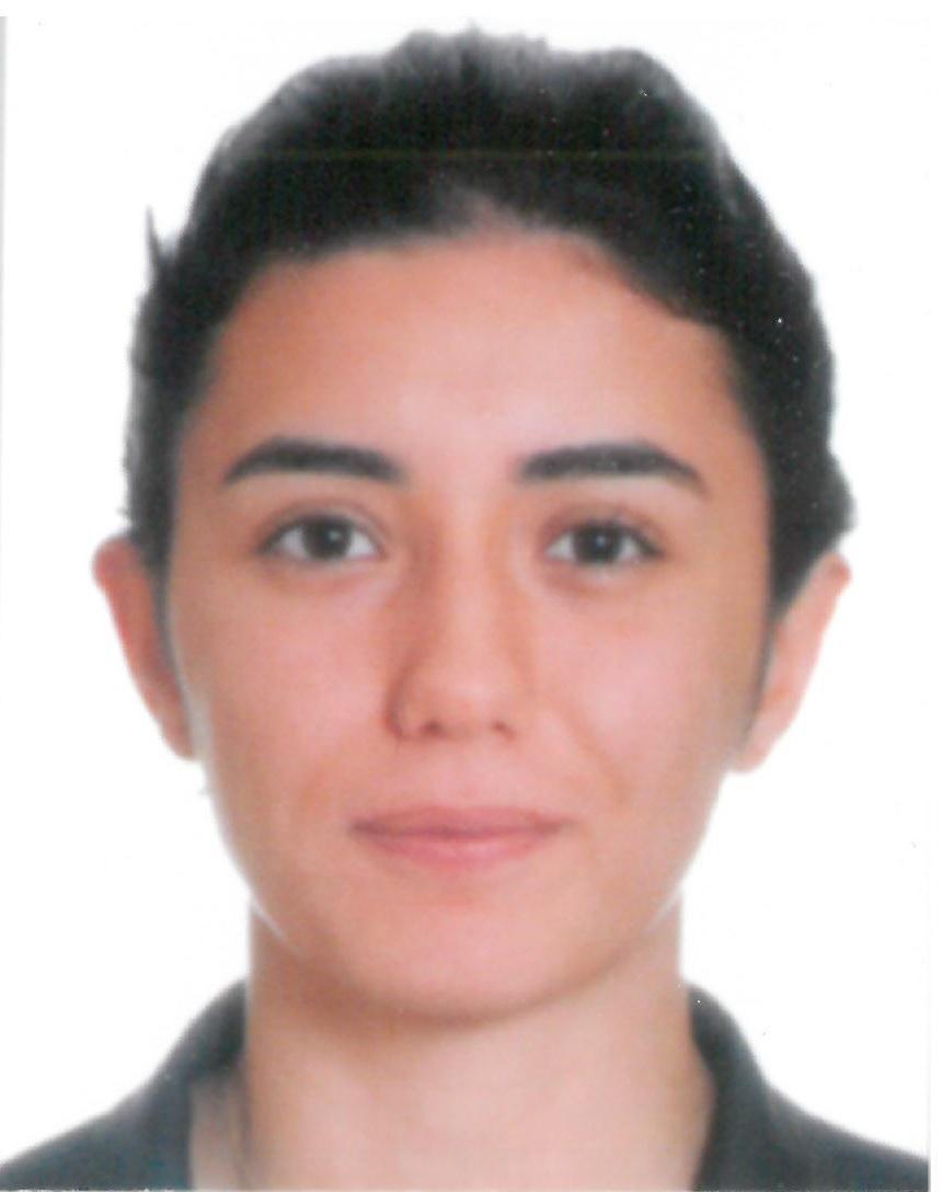 Melis Yilmaz