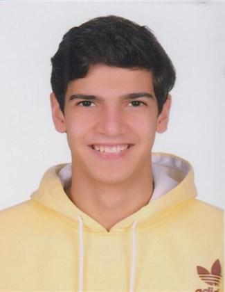Ali Ahmed Mohamed Amin Farahat