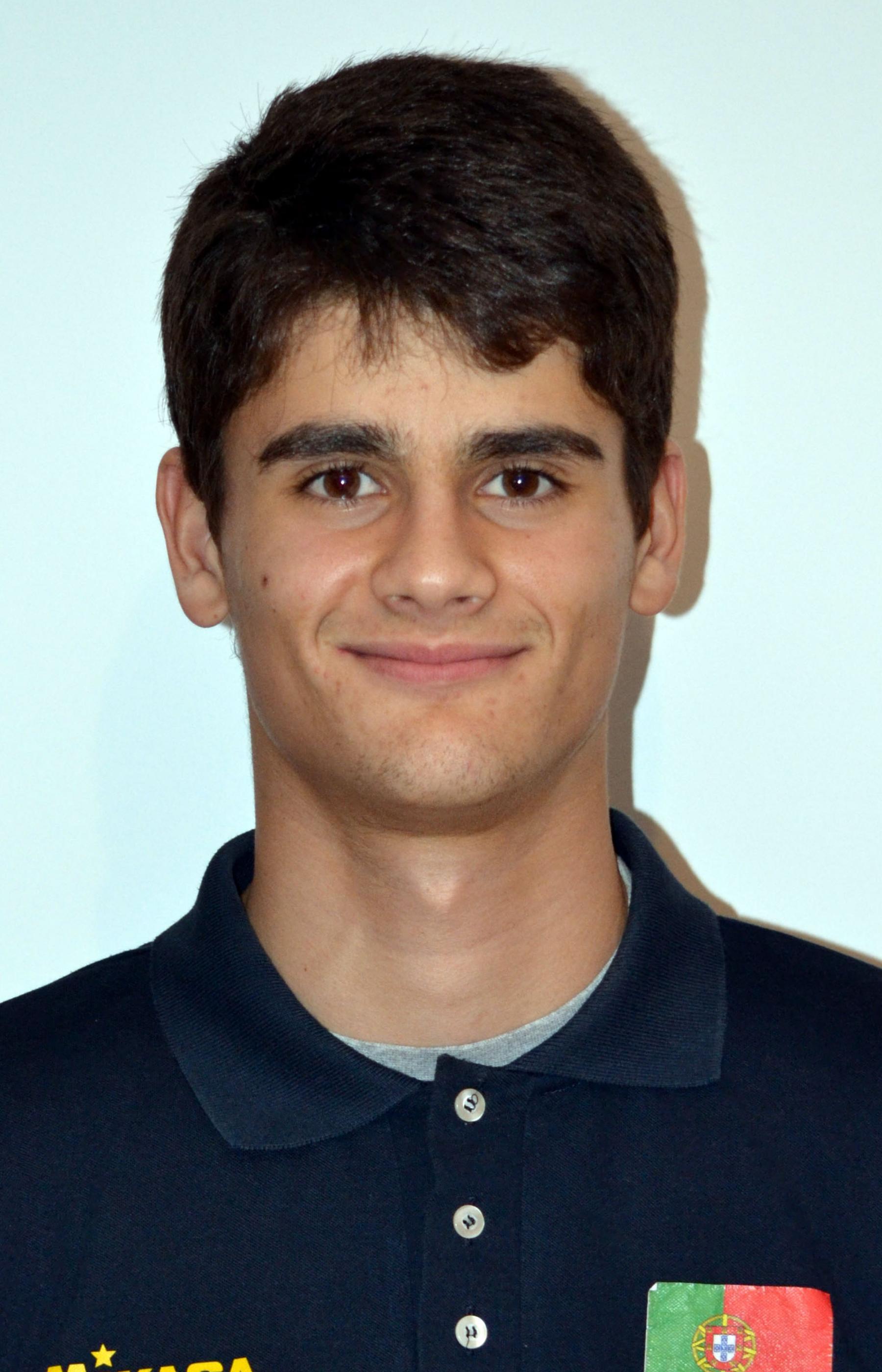 Afonso Guerreiro