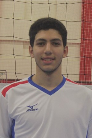 Mahmoud Sherif Abdelmeguid