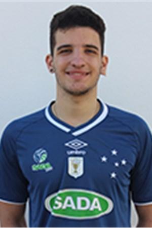 Gabriel Drumond Armanelli Telles